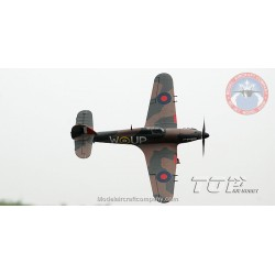 Top RC Hobby Hurricane ,800 mm Serie RTF