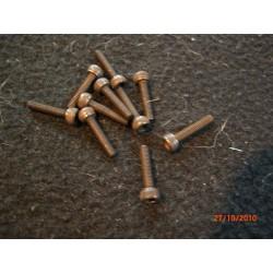 Imbus Boutjes M3 x 12 mm